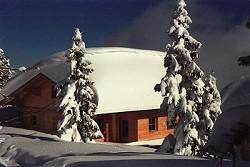 Ferienhaus Gediegenes Alpen Chalet im Zillertaler Ski & Wanderpa...