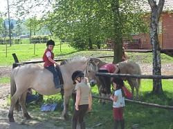 Bauernhof Reiterferien Erlebnisbiobauernhof für Kinder und Familien