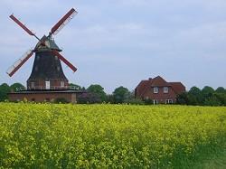 Ostsee komfortable und idyllisch gelegene FEWO neben historische...