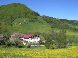 Ferienwohnung Bauernhof Aufleben am Bio Bauernhof Kleinplettenba...