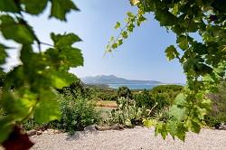Ferienhaus auf Korsika, in der Bucht von Calvi mit Blick auf Mee...