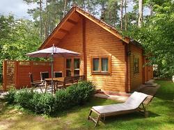Ferienhaus Blockbohlenhaus auf Waldgrundstück nahe Roofensee für...